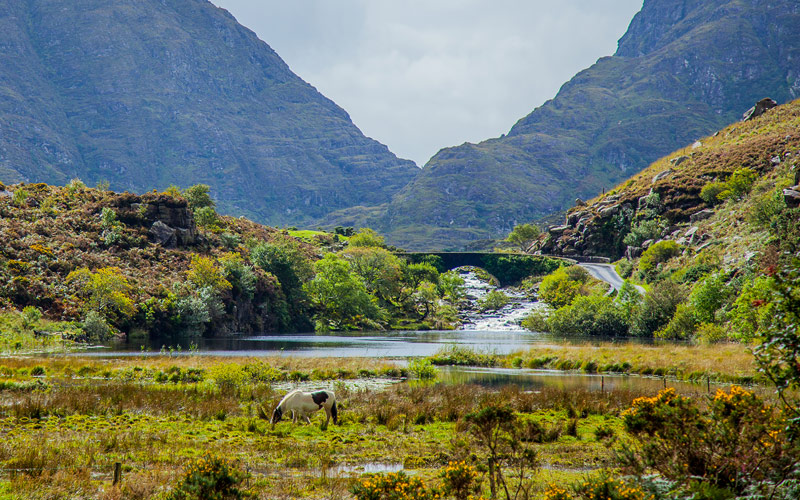 Enjoy a pony and carriage ride through the Gap of Dunloe