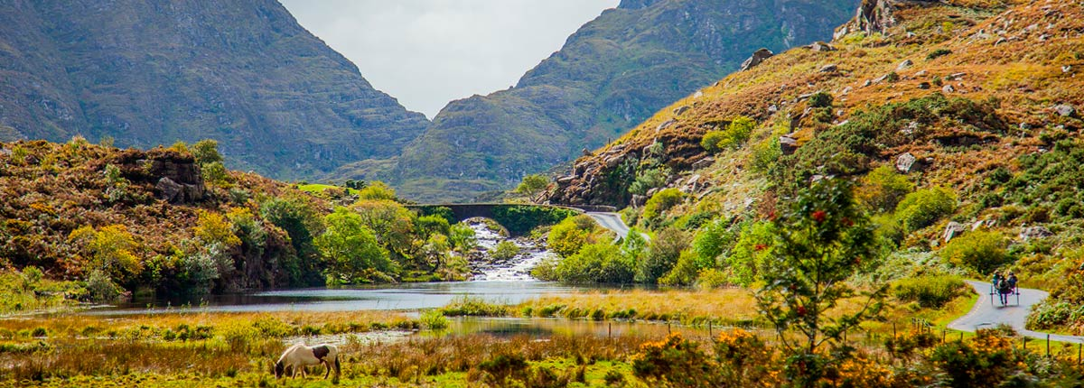 Pony and trap through the Gap of Dunloe